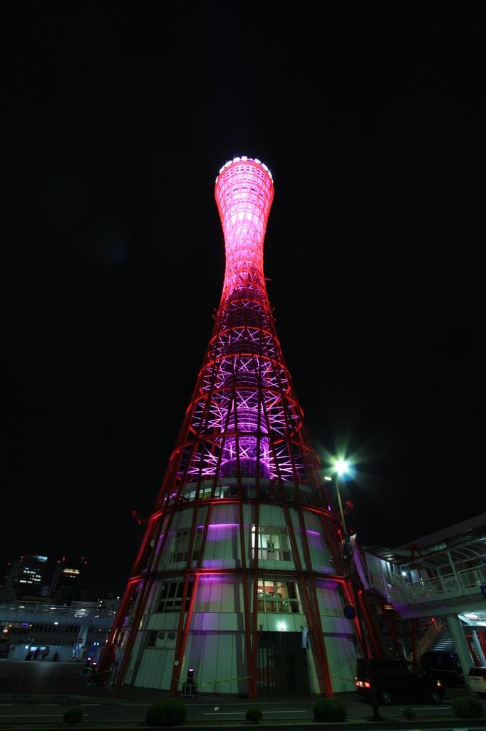真下から見たピンク