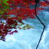 厳美渓09秋紅葉
