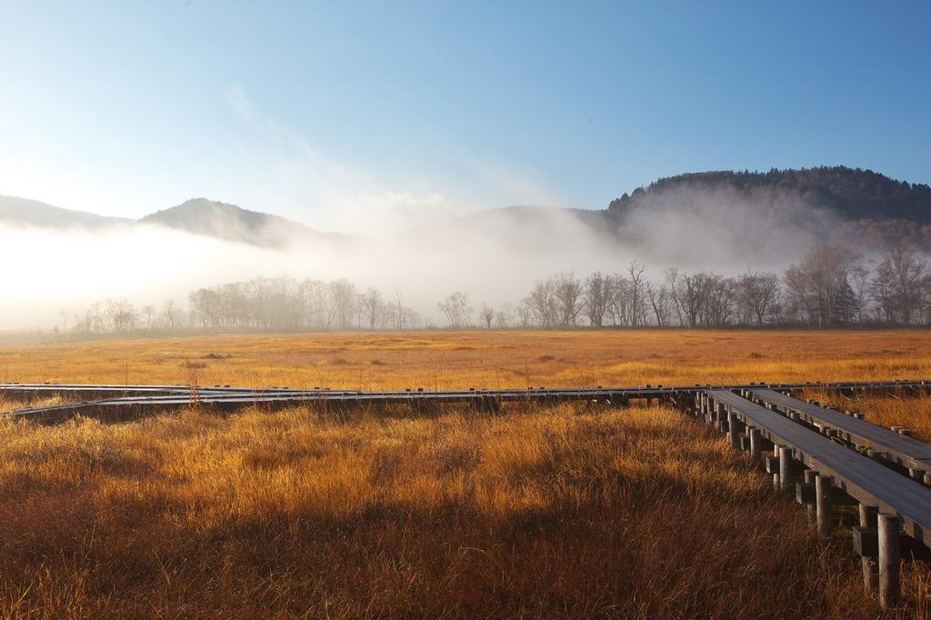 朝霧の尾瀬ヶ原(上昇する霧)