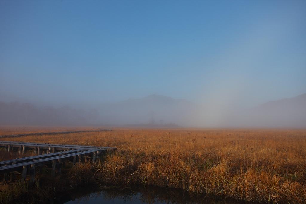 朝霧の尾瀬ヶ原(白虹の向こうの至仏山)