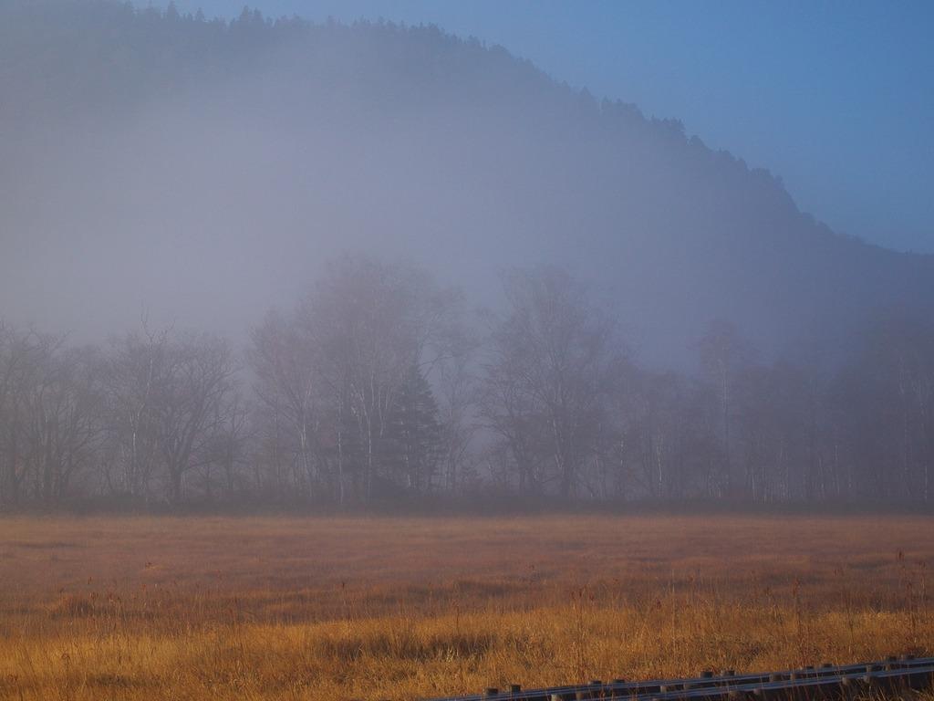 朝霧の尾瀬ヶ原ー幻想