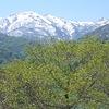 残雪の峰(2)