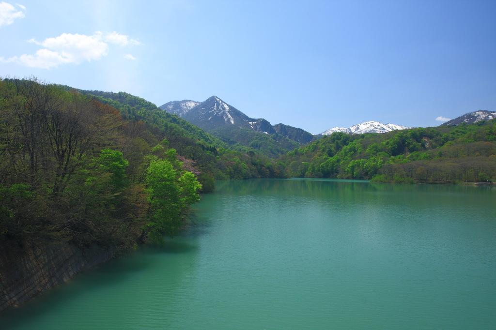入畑ダム湖・春(1)