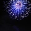 夜空のBlue Flower