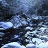 渓流の雪化粧