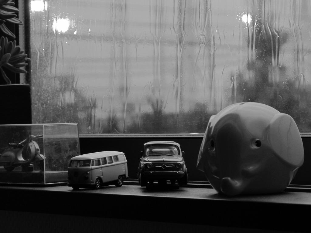窓辺の生き物達