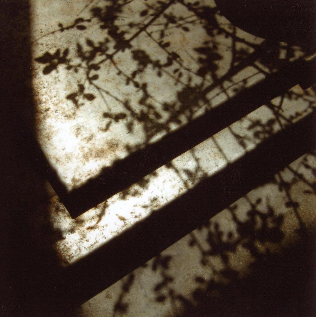 影を落とす午後