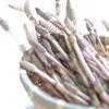 今日の収穫 土筆。
