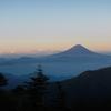 20120820_kobushi_fuji