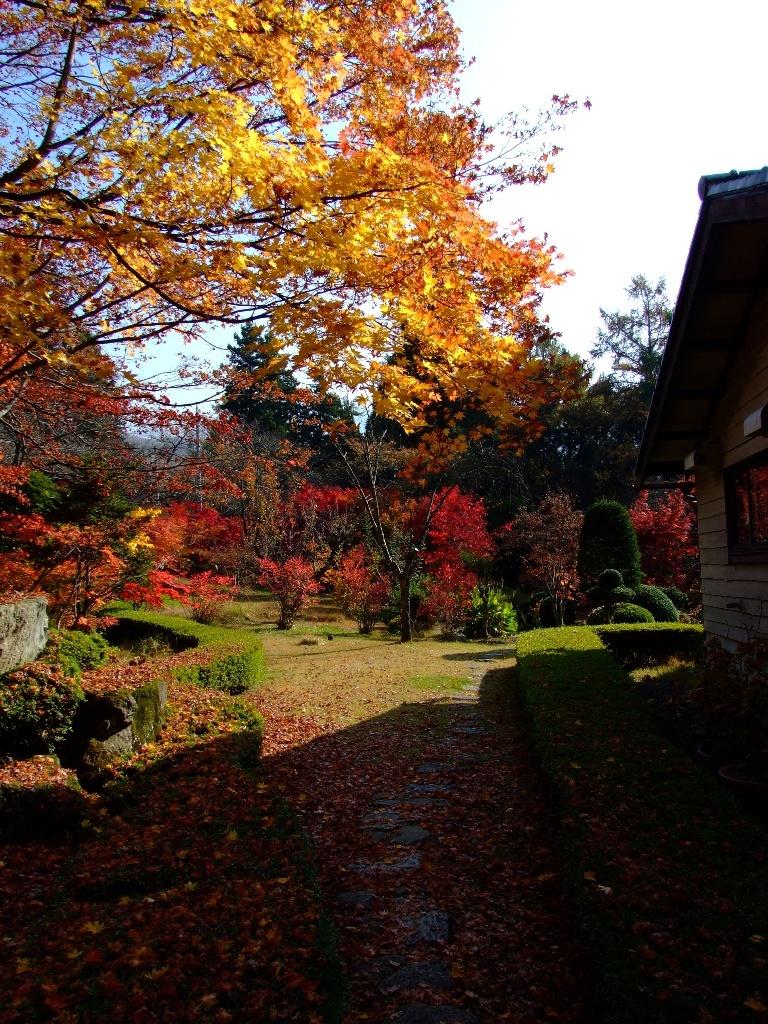 「志賀山文庫」紅葉に染まる庭