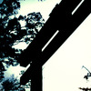 鳥居-torii-