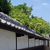 萩の武家屋敷