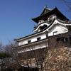 冬の犬山城2