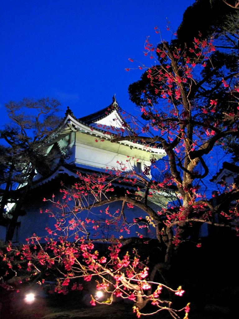2009京都 二条城03