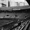 さようなら広島市民球場 1