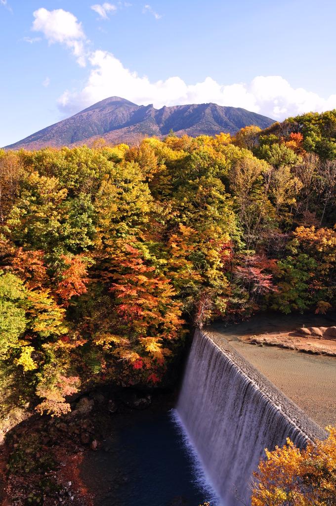 八幡平森の大橋 (1)