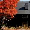 秋の色 07