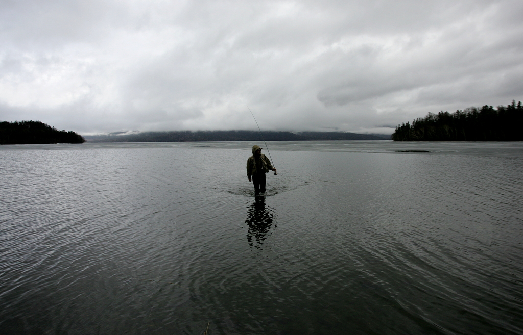 岸辺の釣り人