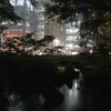 夜の毛利池