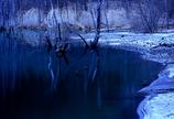 静かな湖畔の橋の上から