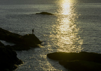 NIKON NIKON D5300で撮影した(朝陽に抱かれて)の写真(画像)