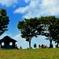 コスモスの丘の休憩所
