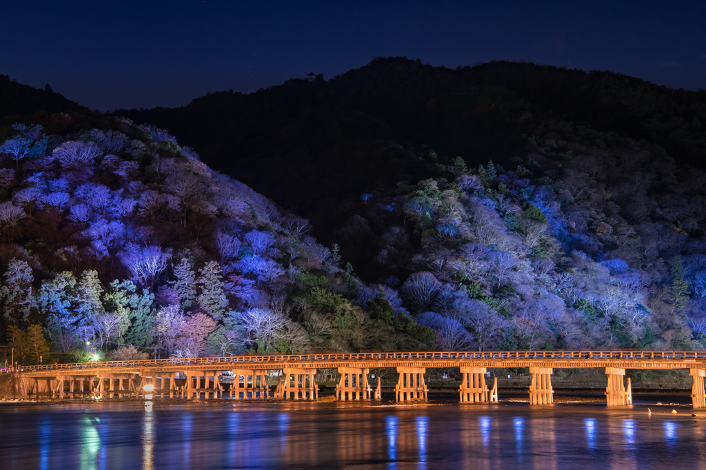嵐山-冬の灯-
