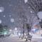 雪降る街角