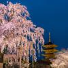 蒼に浮かぶ京の春景