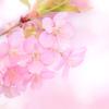 春告げる2