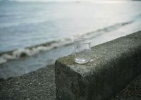 BRONICA SQ-Aで撮影した(湖岸にて II)の写真(画像)