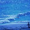 海と戯れる人達