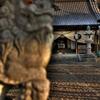 狛犬と神社