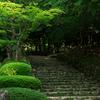 滋賀・百済寺