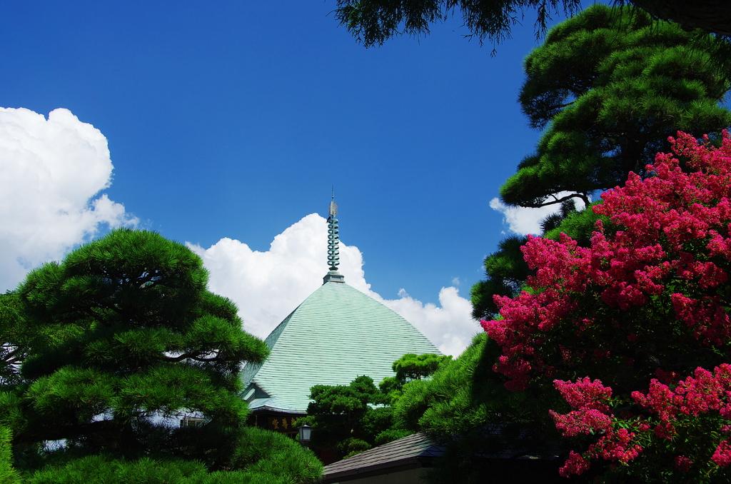 20080816鎌倉本覚寺夷堂