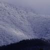 凍える山肌