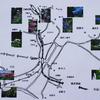 鎌倉紫陽花地図
