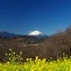 吾妻山公園からの富士