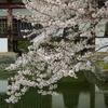 京都(2007/4-2)