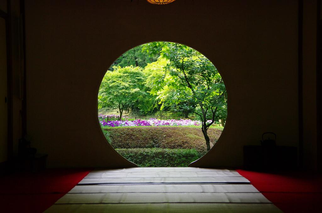 20080607北鎌倉明月院