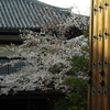 京都(2007/4-1)