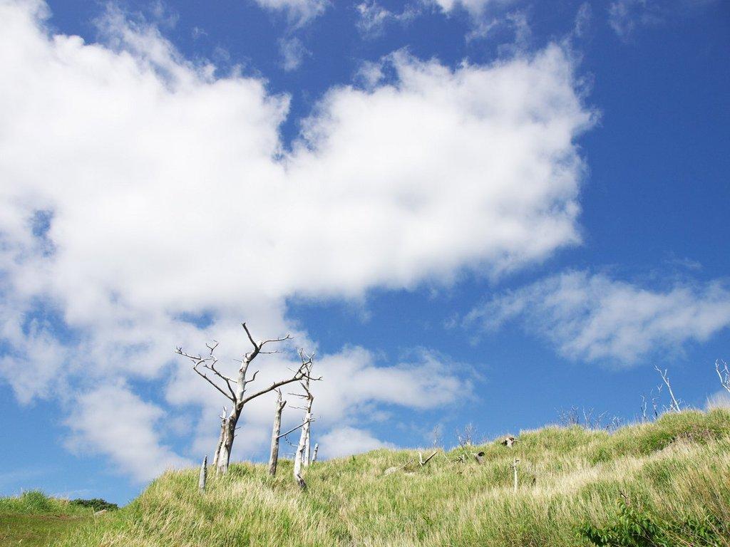 日和山にて