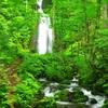 _DSC7303雲井の滝