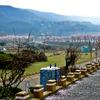 03年韓国慶州桜並木