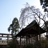 475神社