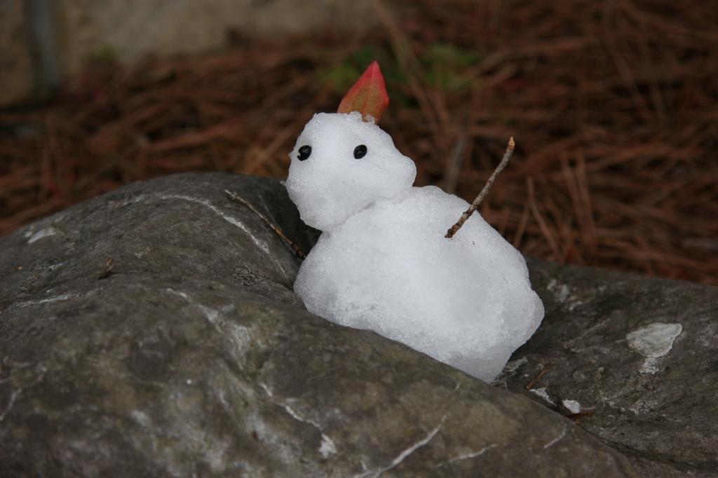 燃える雪だるま!