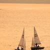 暮れる海に帆を張って