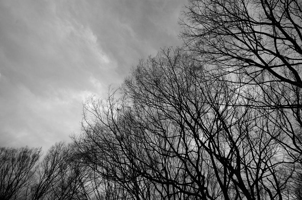 もうすぐ春の空