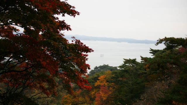 晩秋の松島1