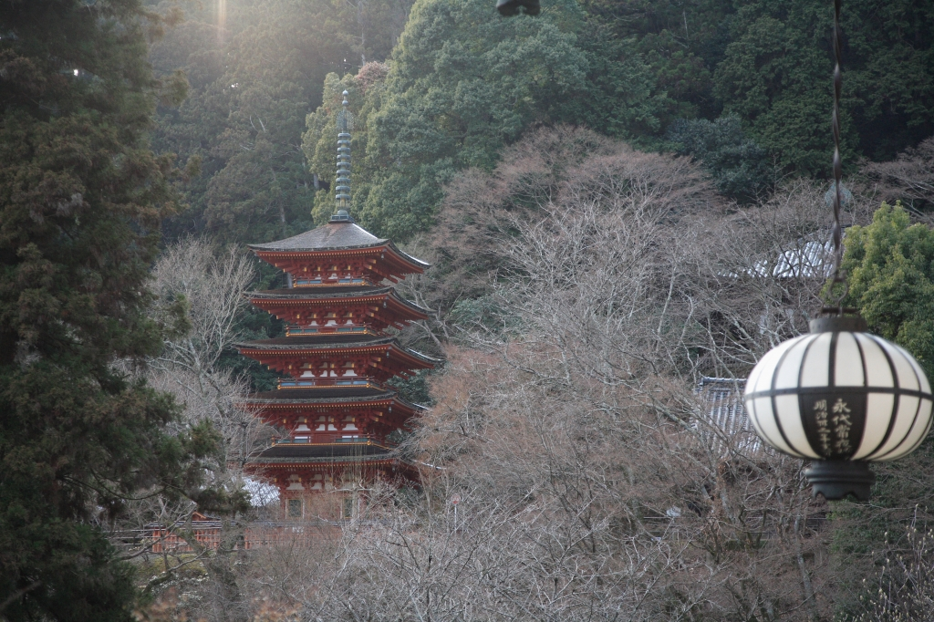 奈良・長谷寺の五重塔